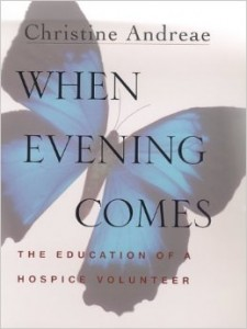 When Evening Comes book cover